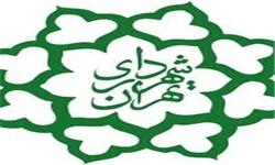 مهلت یک ماهه شورا برای رفع ابهامات شهرداری