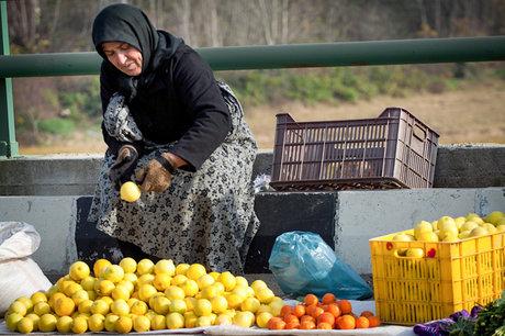 ساماندهی دستفروشان پایتخت