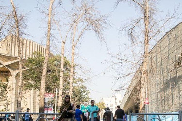 پیشنهاد یک کارگردان تئاتر به شهرداری تهران برای ساختمان کنار تئاترشهر