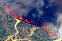 رئیس سازمان حفاظت محیط زیست:عمدی در کار است تا آتش هورالعظیم خاموش نشود