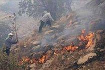 جزئیات آتش سوزی شب گذشته در اتوبان بابایی