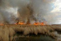 آخرین وضعیت آتش سوزی هورالعظیم